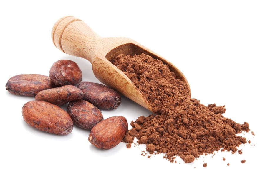 pieffe-ingredienti-neutri-integratori-cacao-polvere-principale